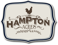 hampton-site-logo-new